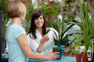Two women in a nursery looking at plants